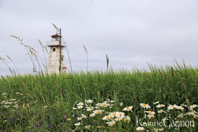 Cape Tryon Lighthouse, PEI Le Phare de Cape Tryon, IPÉ