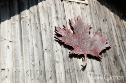 Carved Maple Leaf decorating in boat shed
