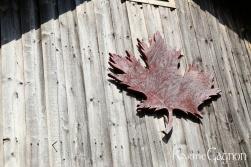 Carved Maple Leaf decorating in boat shed