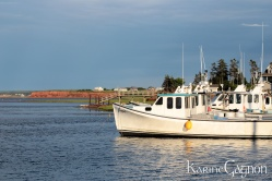 Another view of Malpeque Harbor