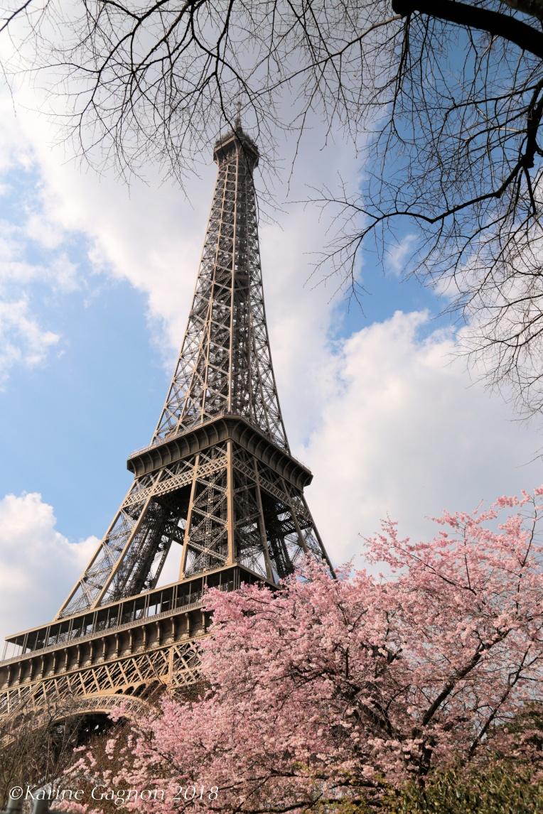ParisVersaillesLondresWindsor2018 400